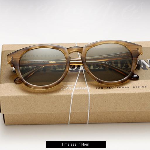 han-timeless-sunglasses-horn