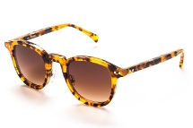 AM Eyewear Ava - Old School Tortoise